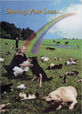 Each card includes the complete Rainbow Bridge poem, for you to share with friends and family.