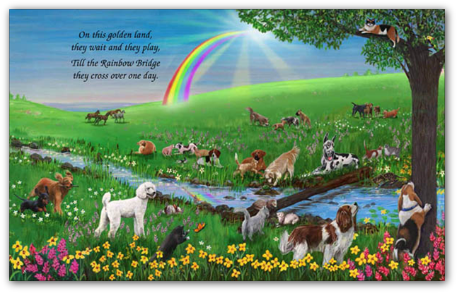 Each couplet is presented as a single spread, with hundreds of dogs, cats, ferrets, and other pets.